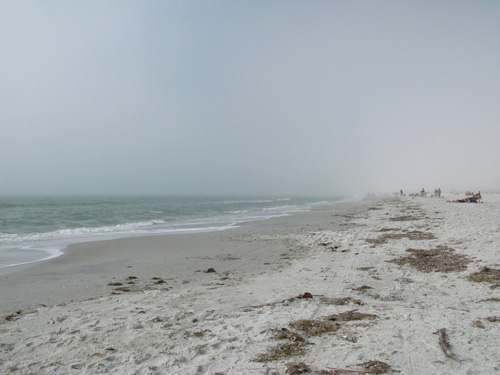 It was a foggy morning on the beach. Day 15 of the Law of Attraction. Leave 1 Dollar.