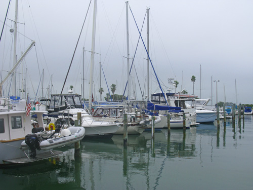 Another foggy day at the marina. Day 17 Of The Law Of Attraction. Leave 1 Dollar.